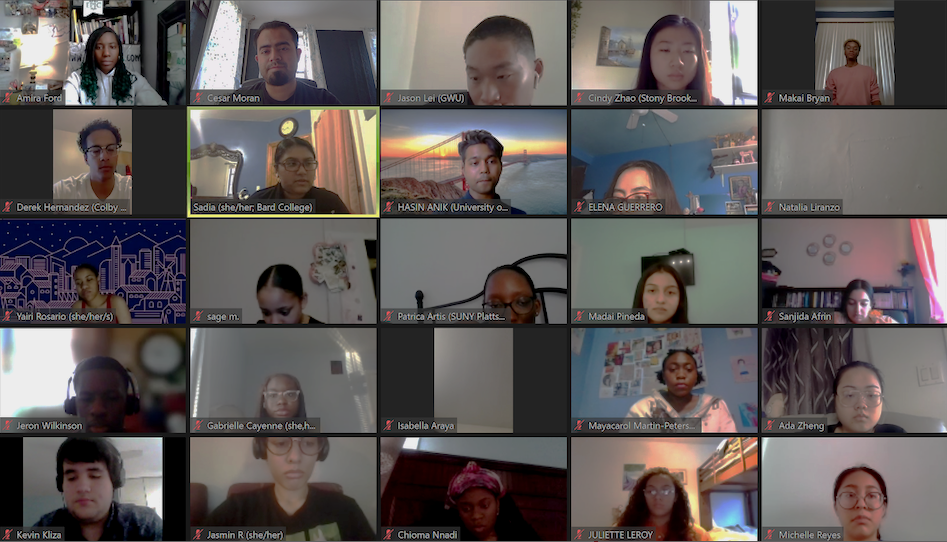 Screen shot of Zoom call featuring Expanded Horizons participants